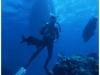 australia-lizard-island-cod-hole-decompressione