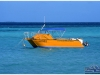 australia-lizard-island-il-catamarano-istituto-di-ricerca-a-blue-lagoon