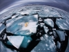 foto-naturalistiche-big_anna-henly-ice-matters-veolia-environnement-wildlife-2012