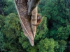 timlaman_wildlifephotographeroftheyear_grandtitlewinner-900x600