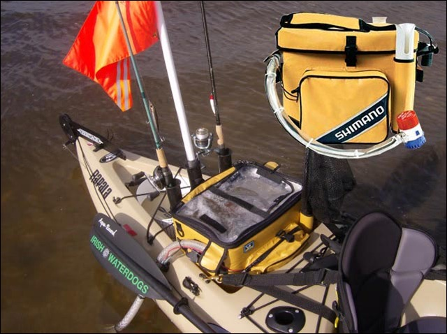 Shimano-Bristol-bay-bait-well2