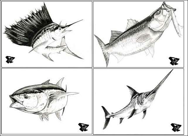 4Ink-disegni-pesci