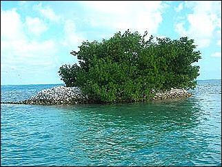 isola-di-conchiglie-caracol