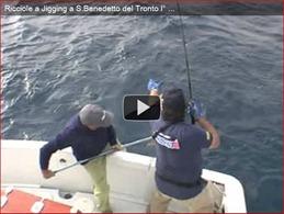 Ricciole video San Benedetto