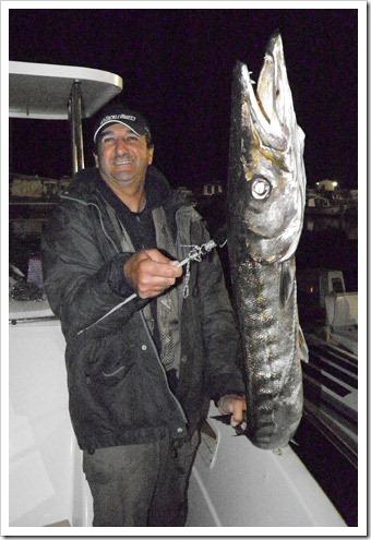 Stefano-Maz-a-traina-di-barracuda