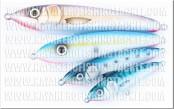 Watermark-wwwkayakerofishingtacklecom-web_thumb