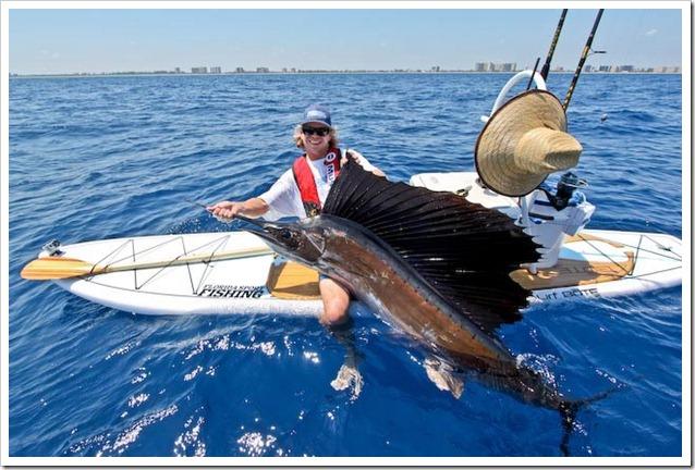 SUP e sailfish Steve Boteboard