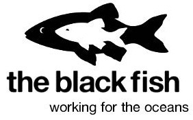 The Black Fish logo web