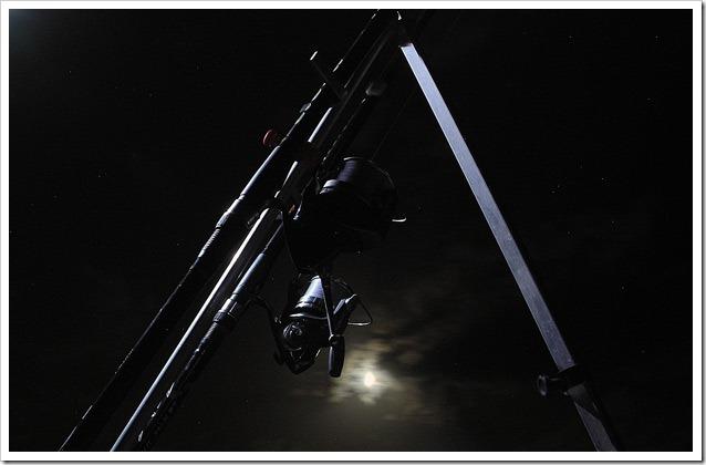 Big-Fish-Arbus-2012--Attesa-alla-luce-della-luna