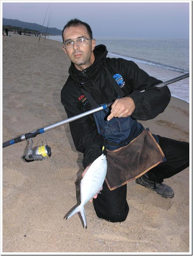 Big-Fish-Arbus-2012-Leccia-stella-all-alba