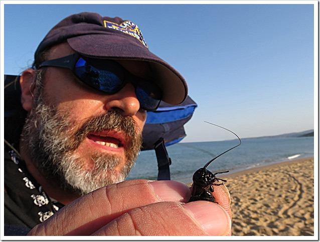 Big-Fish-Arbus-2012---il-Grillo-pescante