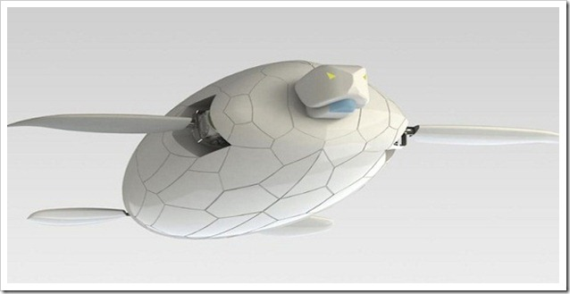 Naro Tartaruga  disegno 3D