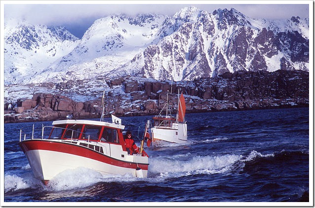 20--Lofoten-----Lofoten--WCCF-return-of-fishing-Cod