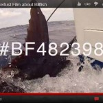 Waterlust film Billfish Foundation