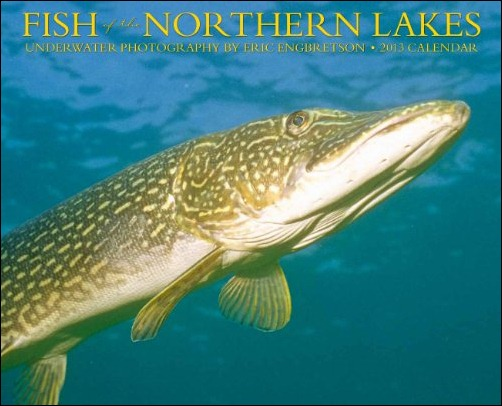 Fish of the Northern Lakes Underwater photography cover