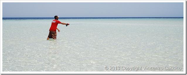 Tropici-da-riva--fly-maldives