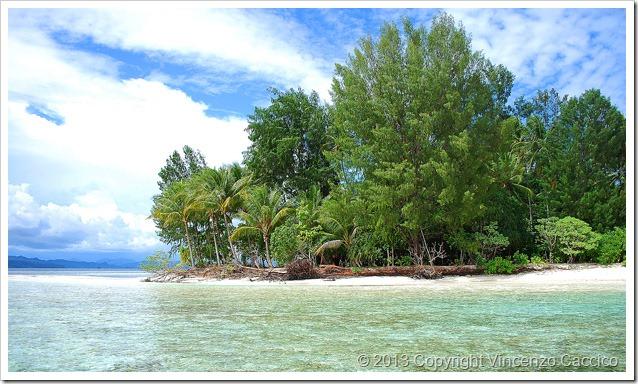 Tropici-da-riva-island-indonesia