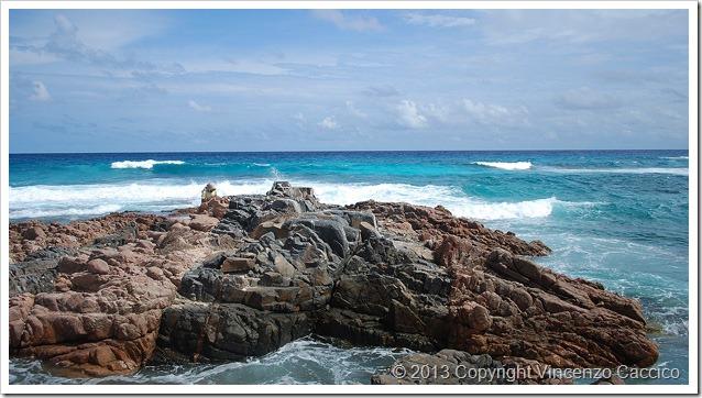 Tropici-da-riva-reef-e-surf