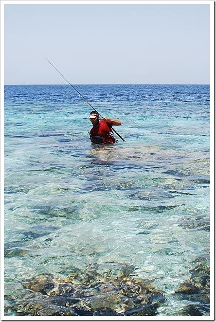 Tropici-da-riva-spinning-from-shore