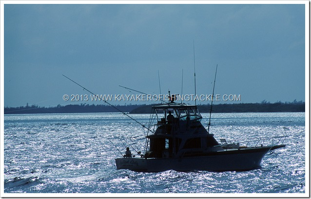 Wahoo-Cayman----02---Offshore-sul-North-Wall