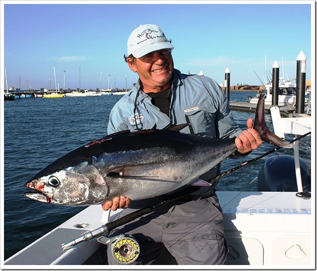 Bluch---southern-bluefin-tuna1