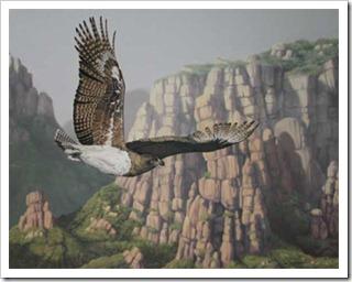 Marshall-Eagle