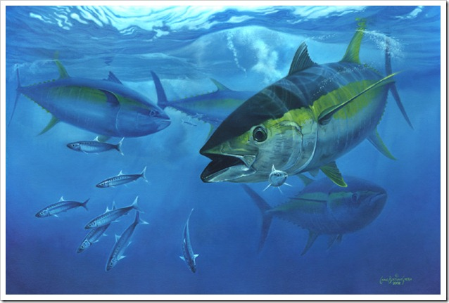 yellowfin-tuna-big