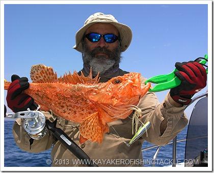 Jigging-in-Sicilia-2013-----Scorfani-per-Kayakero