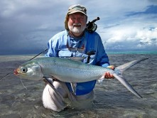 Milkfish fly Alphonse Islands