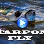 Tarpon-fly