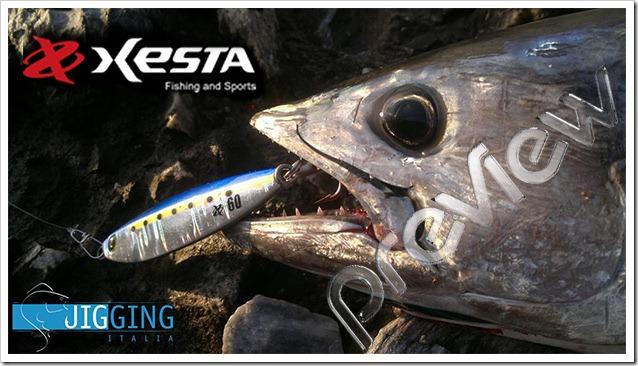 Xesta-cover-anteprima