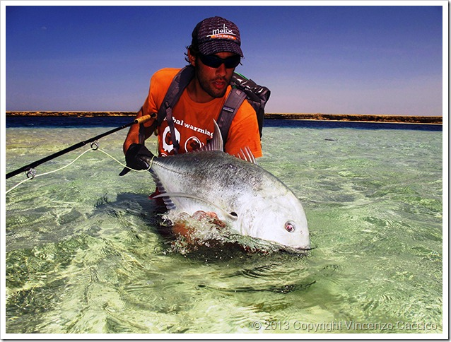 Trevally in Sudan fly fishing