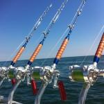 Artico-Tecnic-50-Dinanotex-custom-rods.jpg