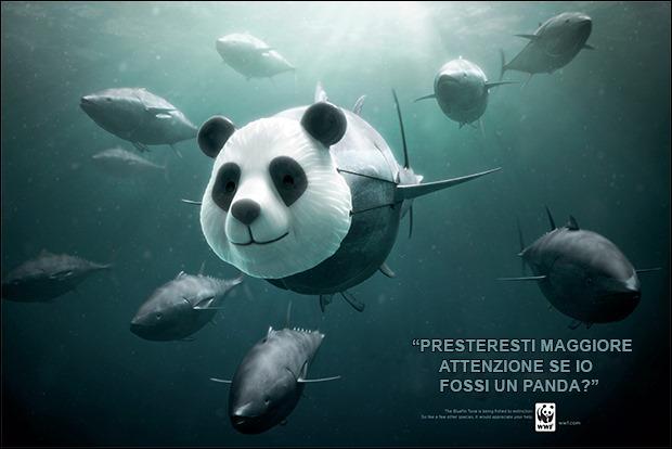 019-KFT-PAGINA-adv-WWF