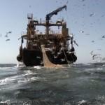 Cabo-Verde-overfishing.jpg