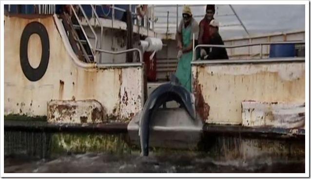 Cabo Verde overfishing 4