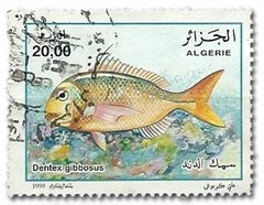 Corazziere in francobollo algerino