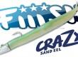 Crazy-Sand-Eel-Fiiish-cover.jpg