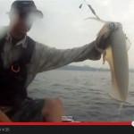 Kayak-Eging-Okinawa