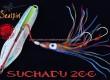 SEASPIN-SUCHADU-cover.jpg
