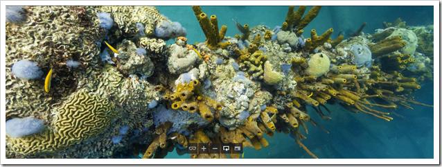 Antilla Wreck Aruba 1