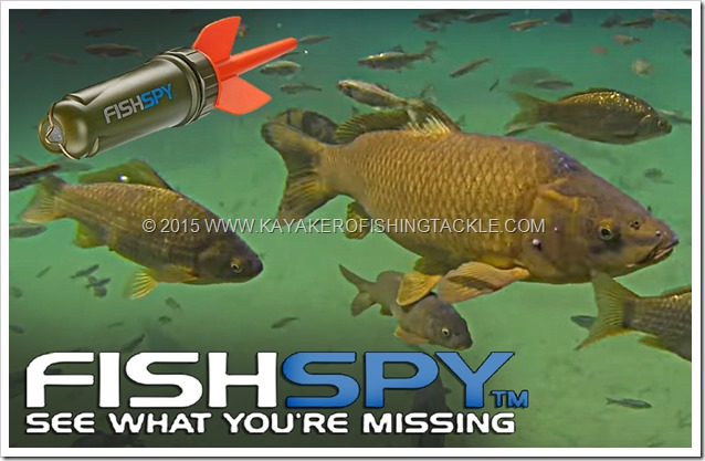 Fishspy-cover