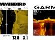 CAUSA-HUMMINBIRD-vs-Garmin-Imagining-Scan-vs-SideVu-web.jpg