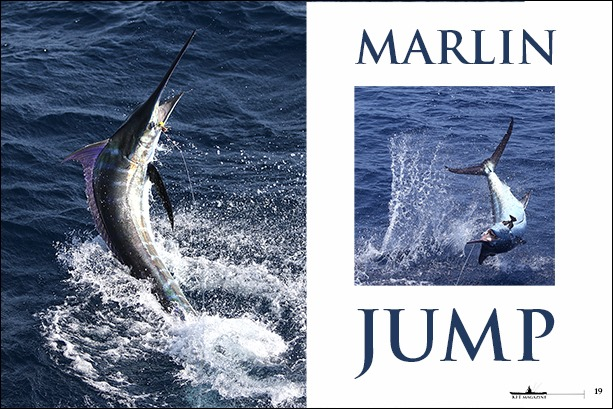 MARLIN-JUMP-Capo-Verde-AL