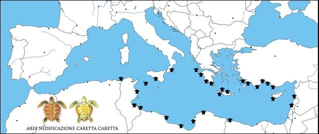 Caretta mappa nidificazione