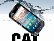Cat-S60.jpg