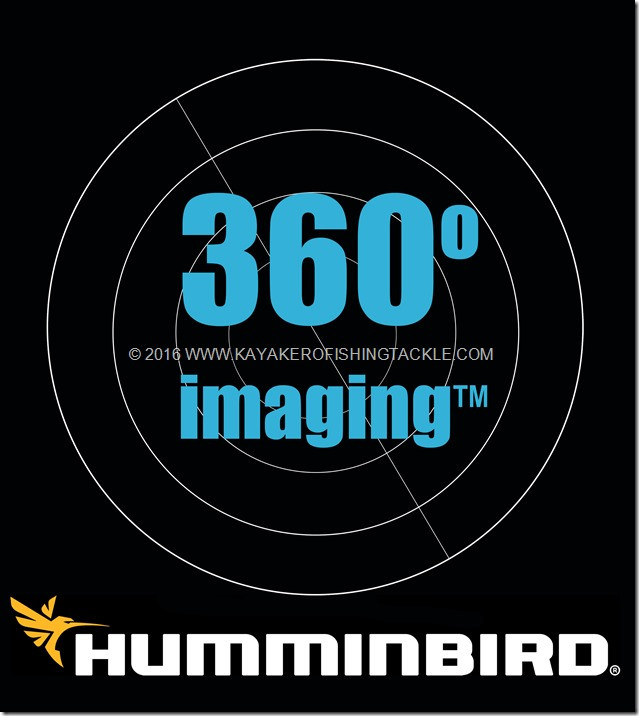 Hummonbird-sonar-imaging