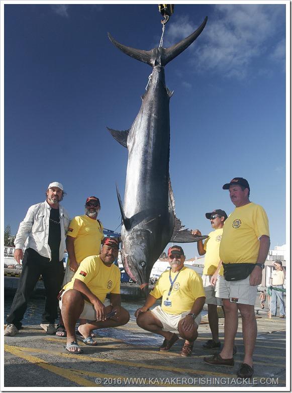 Maderia Marlin da 397 kg di Angola B WCBG