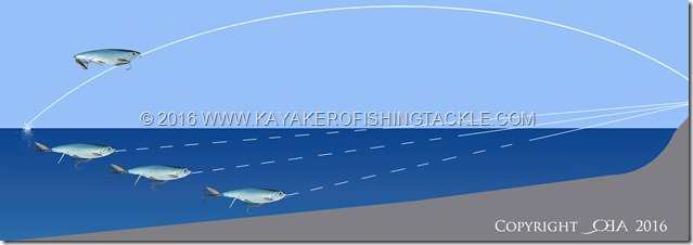 Lancio-3D-Blacktip-Herring
