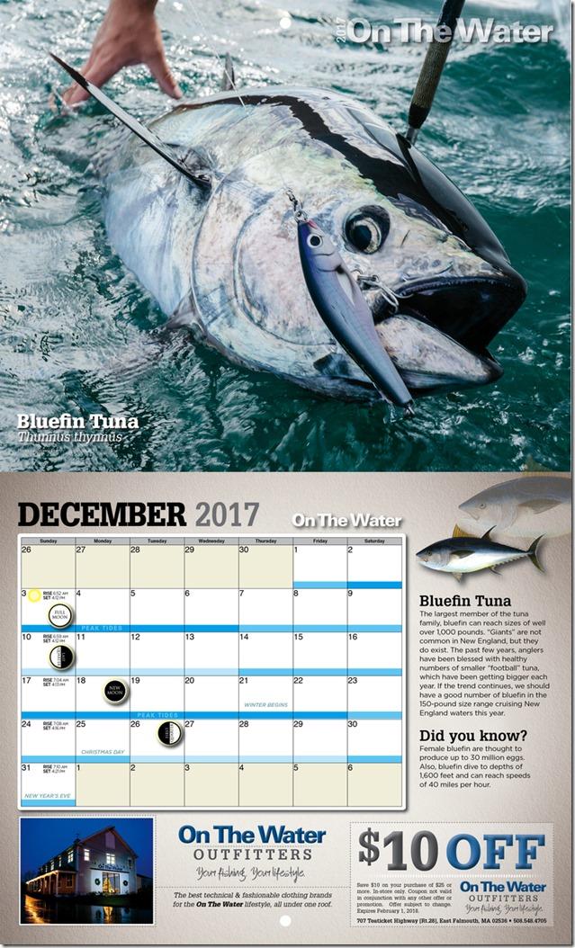 OTW_2017_Calendar_IMAGES14__77825.1473429483.1280.1280